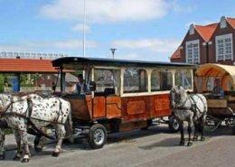 Hotel Langeoog - Logierhus Langeoog - Langeoog - kutschfahrten
